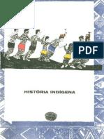 Texto Cartilha Indígena Sobre_História_Indígena