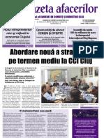Gazeta Afacerilor - nr.13/2008