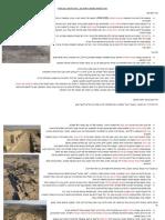 סיכום אתרים מקראיים של אפרת נתן