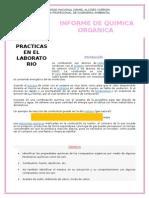 Informe de Obtencion Del Metano
