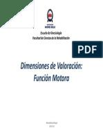 Dimensiones de Valoración Motora (MIS-WEEFIM-FAM)