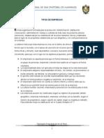 Tipología Empresarial en El Perú