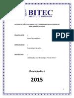 INFORME DE PRÁCTICAS FINALES  bitec - copia.pdf