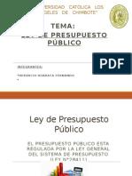 LEY DE PRESUPUESTO PUBLICO PERUANO 28411