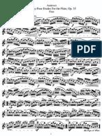24 Etudes, Op 33 - Andersen