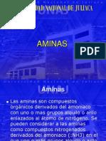 Semana 11 Sesion 1- Aminas