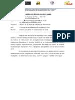 Esquema Informe Final Del Formador
