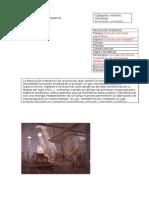 Ejemplo de Ficha 1a Revolucion Industrial Reparado (1)