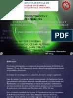 Proyecto final Sedimentologia- Namora Fm Farrat