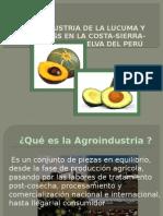 Agroindustria de La Lucuma- Palta Hass