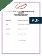 Monografia Ciru III 3