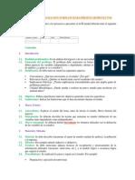 Formato Presentación Proyectos 3