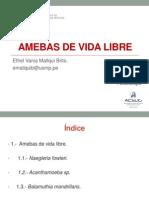 Teoría 3 -AMEBAS DE VIDA LIBRE. 2015