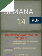 ABANTO OBLITAS CARLOS N. - SEMANA 14 (1).pptx