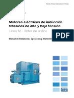 WEG Motor de Induccion Trifasico de Alta y Baja Tension Roto