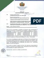 Guia Metodologica Profocom Maestria (1)