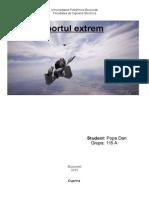 Raport Tehnic-Popa Dan 115A