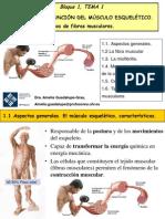 Bloque 1_tema 1_estructura y funcion del musculo.pdf