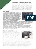 Animales en Peligro de Extinción en El Perú 2