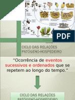 209208462 Ciclo Das Relacoes Patogeno Hospedeiro