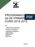 PROGRAMACIÓ 5 primaria