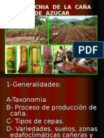 Agrotecnia de la Caña de Azúcar.ppt