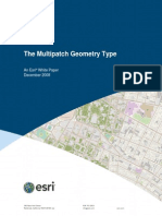 Multipatch Geometry Type