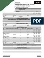 Formato de Aplicación de Sanción - Entidad