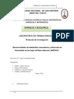 """""""Reconocimiento de metabolitos secundarios y extracción de flavonoides en las hojas de Piper aduncum  (MATICO)"""""""