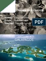 Flora and fauna of ecuador.pptx