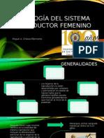 Histología  aparato reproductor femenino, generalidades