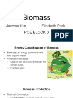 1 2 1 energy source presentation- biomass