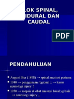 Spinal,Epidural & Kaudal