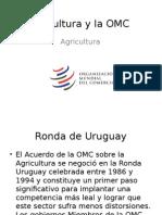 México y la OMC