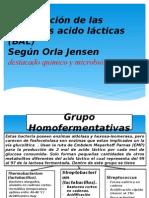Clasificación de Las Bacterias Acido Lácticas (BAL