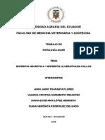 Trabajo de Patologia Aviar