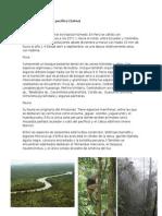 Bosque Tropical Del Pacifico