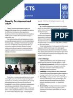 UNDP FF Capacity
