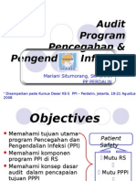 Audit Program Ppi ( Mariani,Skm,Mha )