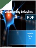 UNDERSTANDING ENDORPHIN.pdf