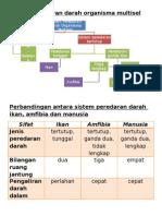 Sistem peredaran darah organisma multisel.docx