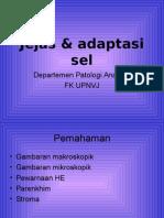 LAb act Jejas & Radang, FBS 3 TA 07-08.ppt