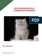 Secretele Dezvaluite Ale Comportamentului Pisicesc