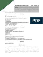 Ficha Espanhol 9º Ano