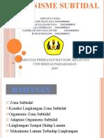 Presentasi Biola Subtidal(Kel.3)