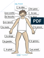T T 2385 Parts of the Body A4 French