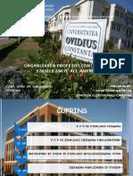 Organizarea Profesiei Contabile in SUA-ppt