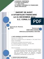 Raport de Audit Financiar - Situatii Financiare 2014