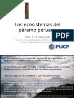 Los ecosistemas del páramo peruano OEA -Max obs