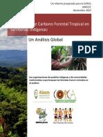 Las Reservas de Carbono Forestal en Los Territorios Indigenas
